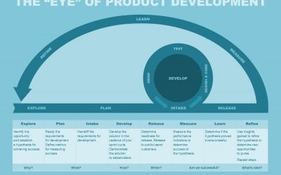 The Project Managers Circle of Life